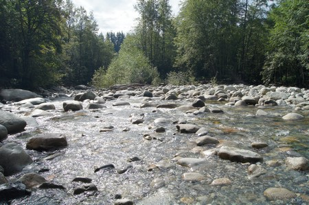 lynn-canyon-creek
