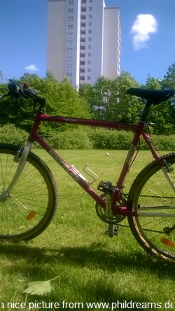 fit-mit-dem-bike