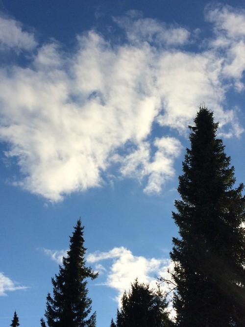 cloud-nr-1