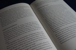 Seite aus dem Buch