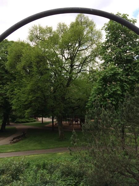im-stadtgarten