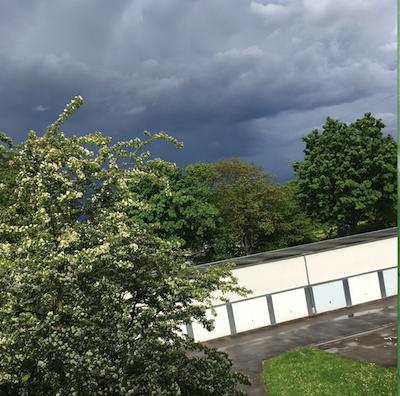 regen bild